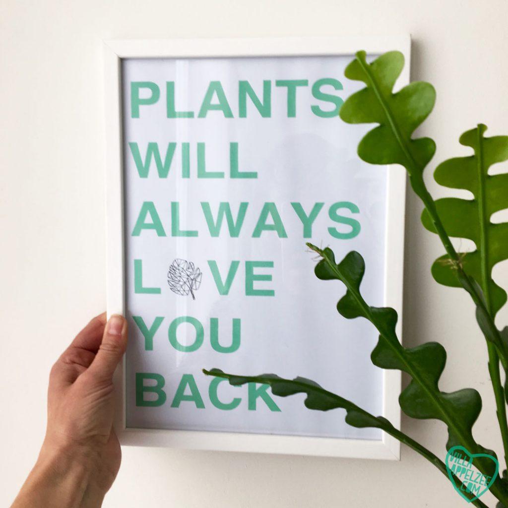 Je woning opfleuren met planten