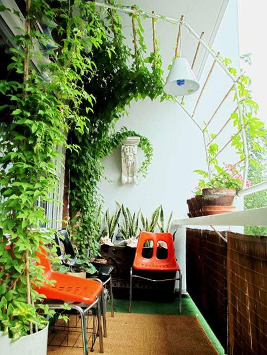 klimop als schaduwmaker voor balkon of kleine tuin